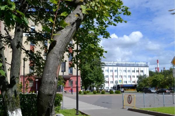 Северсталь привлекает ведущих ученых Вологодской области к проекту комплексного озеленения ЧерМК