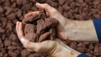 Фьючерсы на железную руду выросли на спросе на сталь в Китае, спотовая цена достигла 13-месячного максимума